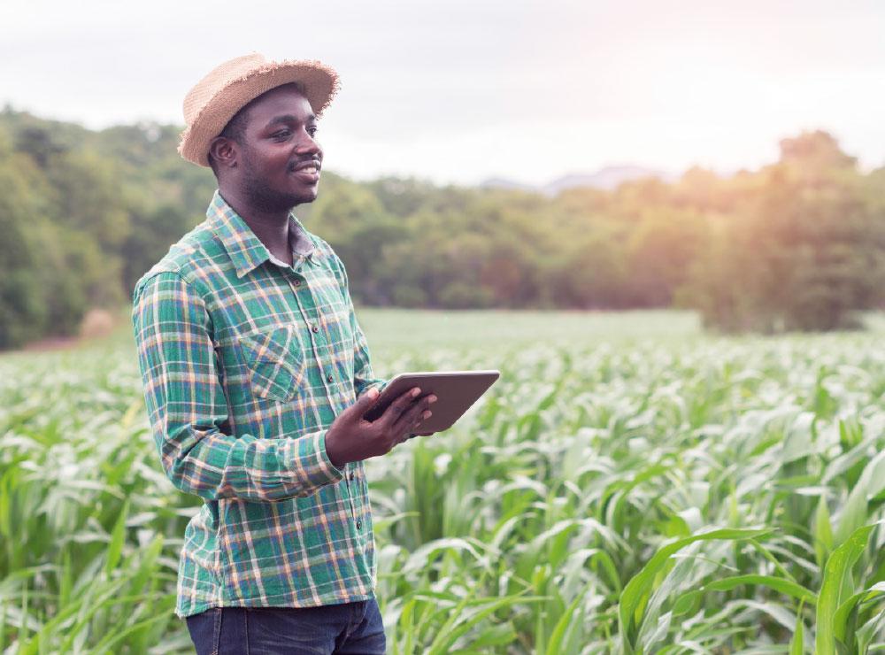 Digital-farming_1