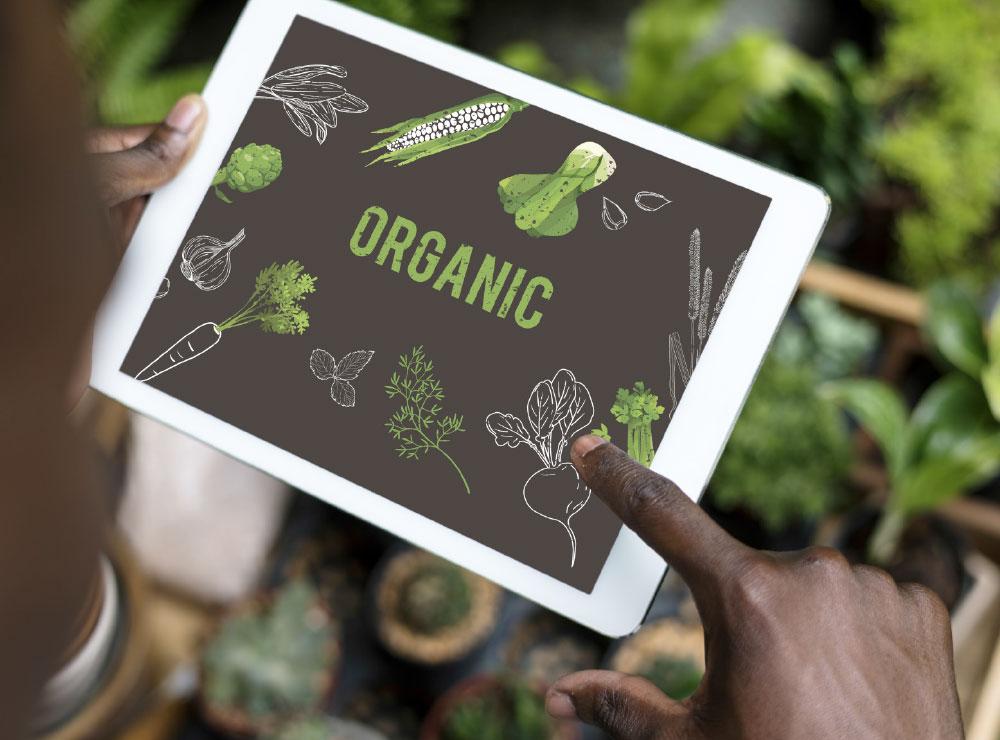 Digital-farming_2