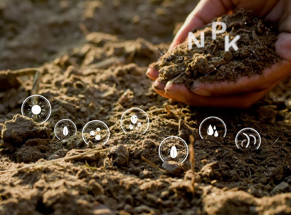 Digital-farming_3